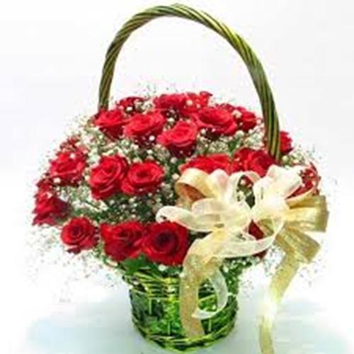 lang hoa hong dep cho valentine