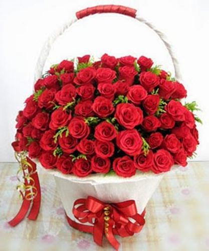 lang hoa hong valentine