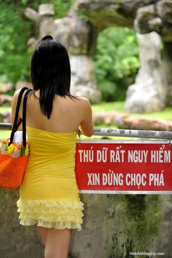 Nhung Anh Hai Nhat Viet Nam