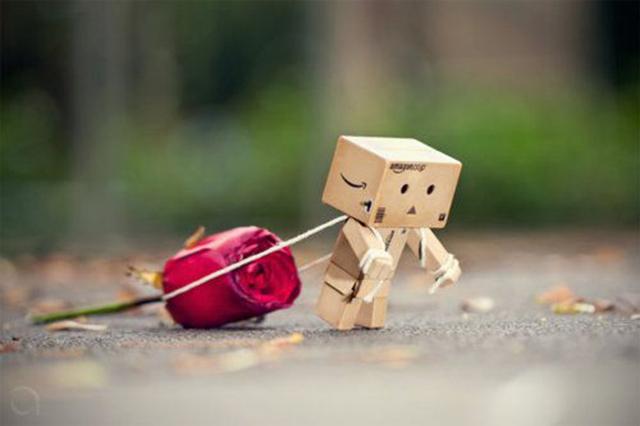 Người gỗ Danbo đang kéo hoa hồng